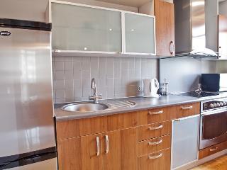 Modern apartment in Zaliakalni - Kaunas vacation rentals
