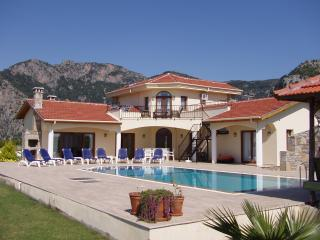 Plantation villa in natural countryside. - Dalyan vacation rentals