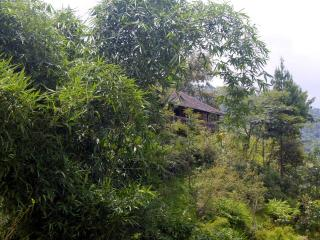 Comfortable 3 bedroom Farmhouse Barn in Bhaktapur - Bhaktapur vacation rentals