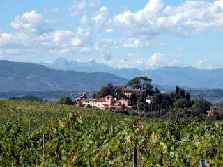 San Gervasio - Pieve Giglio - Palaia vacation rentals