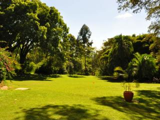 Beautiful Bed and Breakfast with Internet Access and Swing Set - Nairobi vacation rentals