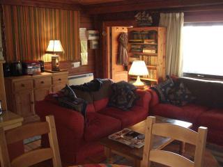 Nice 2 bedroom Bradworthy Cabin with Television - Bradworthy vacation rentals