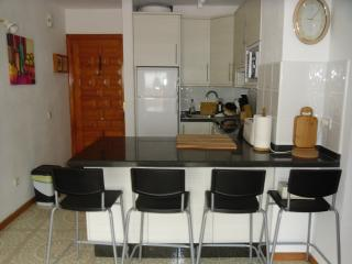 Lovely Condo with Internet Access and Satellite Or Cable TV - Tenerife vacation rentals
