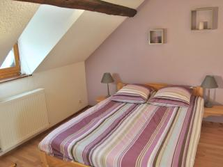 Nice Condo with Internet Access and Dishwasher - Riquewihr vacation rentals