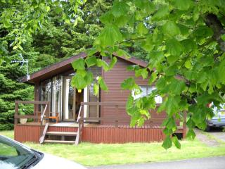Perfect 3 bedroom Beattock Cabin with Deck - Beattock vacation rentals