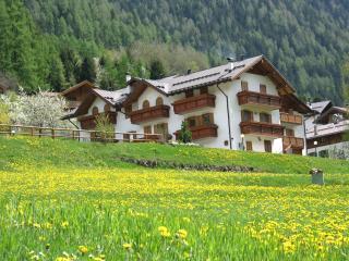 Adorable 2 bedroom Vacation Rental in Cogolo di Pejo - Cogolo di Pejo vacation rentals