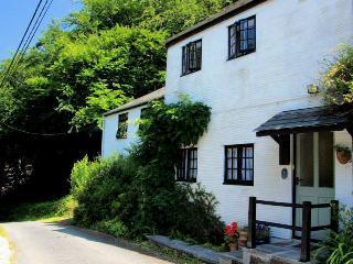 Lovely Cottage with Television and DVD Player - Morval vacation rentals