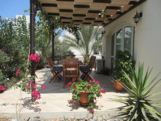 Aphrodite Beachfront Village - Guzelyurt vacation rentals