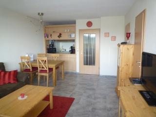 Harzapartment - Schoneck vacation rentals