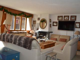 Bright 4 bedroom Apartment in Verbier with Internet Access - Verbier vacation rentals