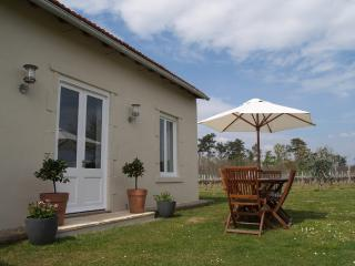 Perfect Gite with Outdoor Dining Area and Swing Set - Saint Germain du Seudre vacation rentals