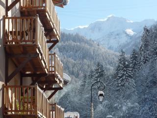Mountain Maison large ski chalet Les Arcs - Les Arcs vacation rentals