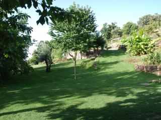 Beautiful Cottage with Internet Access and Corporate Bookings Allowed - Trevelez vacation rentals