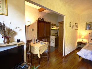 De Castellani Apartment - Florence vacation rentals