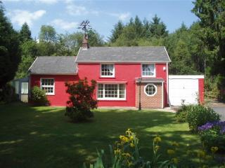 Wonderful Cottage with Satellite Or Cable TV and Garage - Crynant vacation rentals