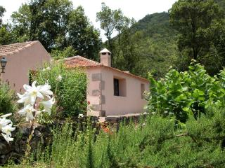 Casa Rural Los Patos - Hermigua vacation rentals