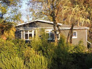 Makakahi Lodge - Ohakune vacation rentals