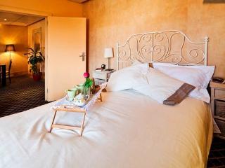 Apartment centr historic - Porto vacation rentals