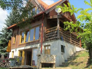 Beautiful 4 bedroom House in Zebegeny with Internet Access - Zebegeny vacation rentals