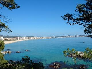 Perfect Condo with Internet Access and A/C - Sant Antoni De Calonge vacation rentals