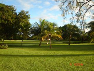 Lemon Arbour studio - Rockley vacation rentals