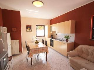 apartments Daniela - 4 persons - Novigrad vacation rentals