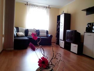 Modern apartmant - Pazin, Istria - Pazin vacation rentals