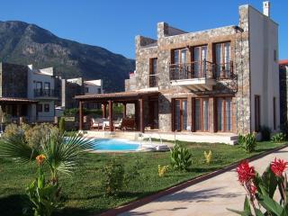 Lemon Tree Villa - Ovacik vacation rentals
