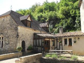 Bright Watermill with Fireplace and Short Breaks Allowed in Salignac-Eyvigues - Salignac-Eyvigues vacation rentals