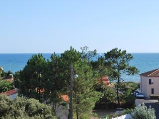 Cozy 1 bedroom Chateau-d'Olonne Apartment with Television - Chateau-d'Olonne vacation rentals