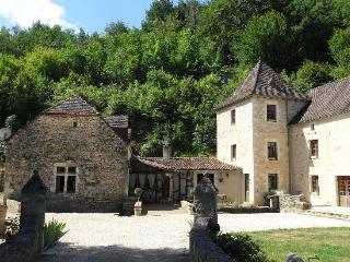 La grange du moulin - Salignac-Eyvigues vacation rentals