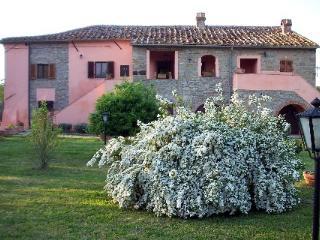 Villa Il Ceriolo - Castiglion Fiorentino vacation rentals