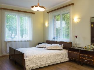 Cozy Townhouse with Internet Access and Central Heating - Birštonas vacation rentals