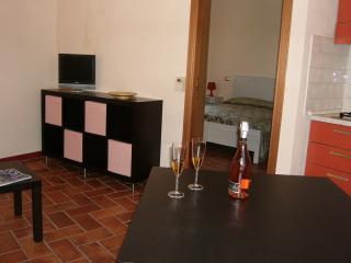 CORTEDEITURCHI residenza Mirò - Longiano vacation rentals