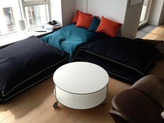 Nice Condo with Internet Access and Dishwasher - Copenhagen vacation rentals