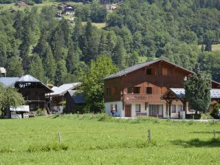 Nice 3 bedroom Samoëns Condo with Internet Access - Samoëns vacation rentals