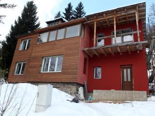 Cozy 2 bedroom Cottage in Jablonec nad Nisou - Jablonec nad Nisou vacation rentals