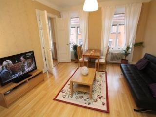 Comfy Apartment, Södermalm's center - Stockholm vacation rentals