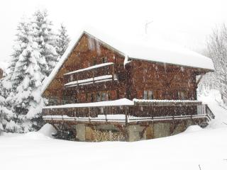 chalet de luxe 4ch Serre-Chevalier-vallée - Serre-Chevalier vacation rentals