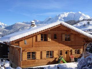 Nice Chalet with Internet Access and Swing Set - Combloux vacation rentals