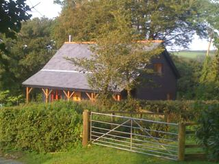 Bright 2 bedroom Holsworthy Cottage with Internet Access - Holsworthy vacation rentals