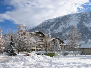 Nice Resort with Garden and Kettle - Disentis vacation rentals