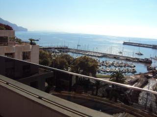 FUNCHAL CENTER APARTMENT - Funchal vacation rentals