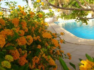 Blu Waters Lux Villa Mellieha - Mellieha vacation rentals