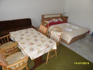 Nice Condo with Television and Kettle - Selce vacation rentals
