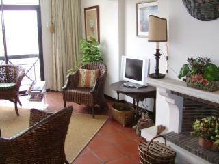 Bright Condo with Shared Outdoor Pool and Microwave - Leiria vacation rentals