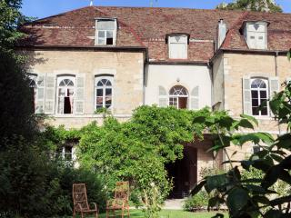 Bright 5 bedroom Gite in Salins-les-Bains with Internet Access - Salins-les-Bains vacation rentals