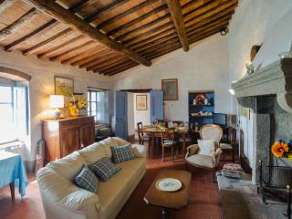 Elegant Tuscan-style villa in magnificent setting, ideal place for a relaxing holiday - Subbiano vacation rentals