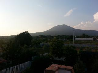 Nice Villa with Internet Access and Garden - Pompeii vacation rentals