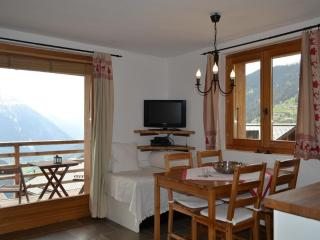Nice Studio with Internet Access and Wireless Internet - Verbier vacation rentals